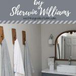 Repose Gray By Sherwin Williams