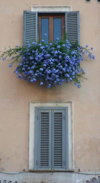 blue shutters tan home