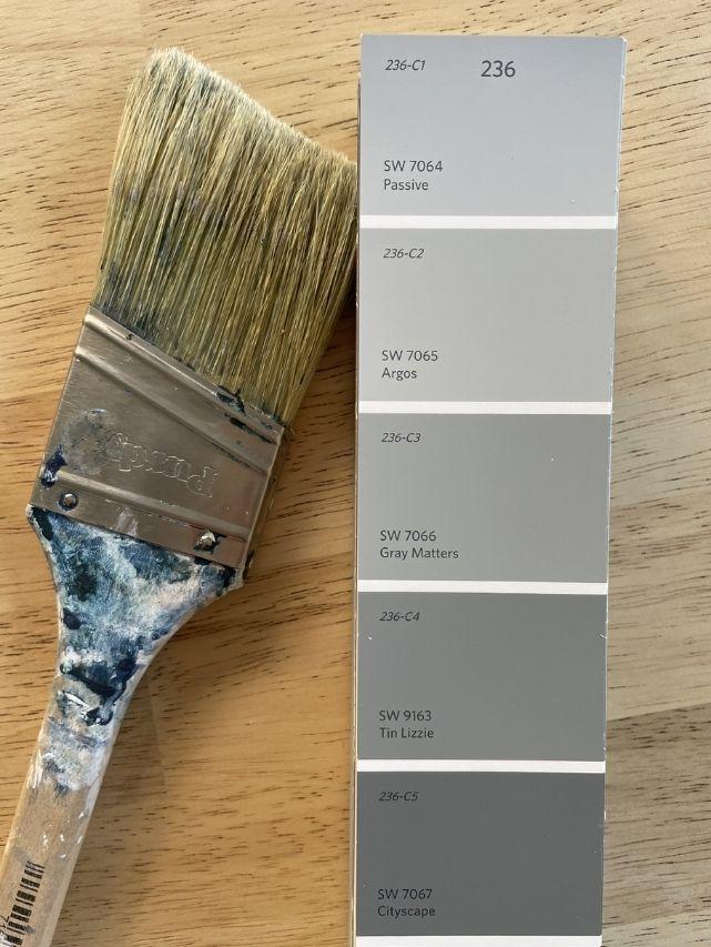 SW Passive paint deck and paint brush